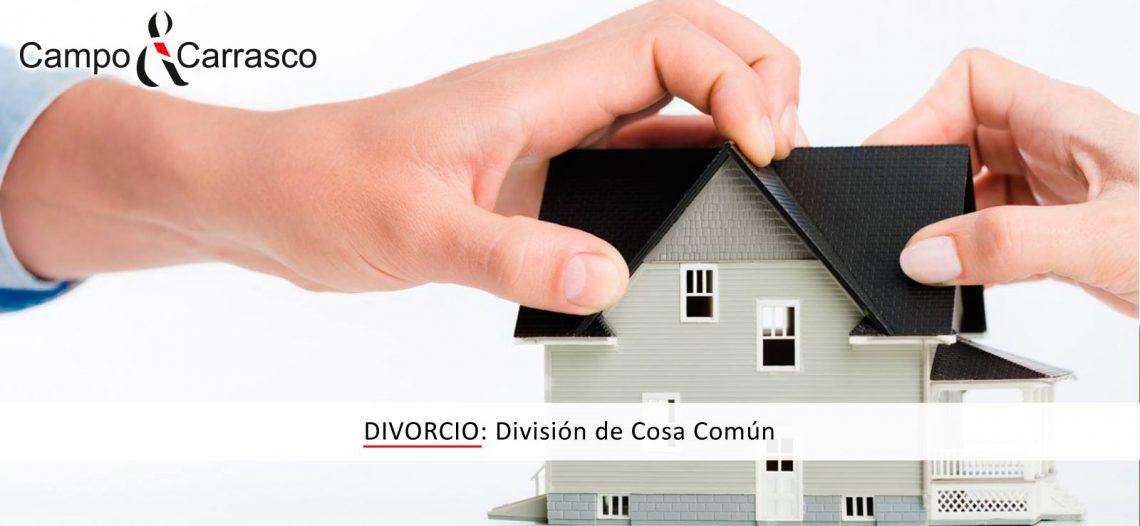 Divorcio: División de Cosa Común